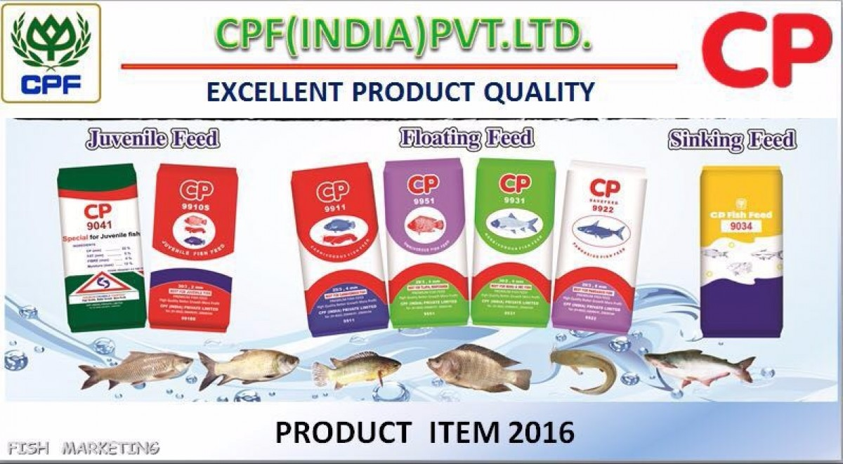 CP A-01 Crumble / Powder / Dust Fish Feed – Protein 38 Fat 5 – FeedWale